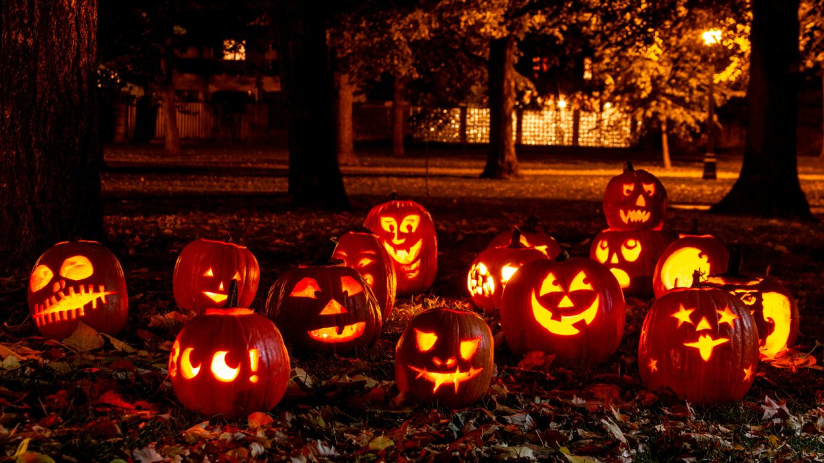 """""""The Meaning of Fear""""– Halloween Themed Event Coming Up at BHC QCCampus"""